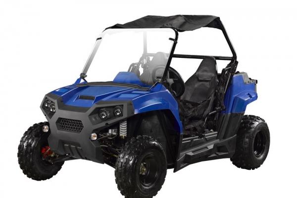 150cc-buggy-4x4-lz150-11844C31A-09D0-331E-7B3C-094996134493.jpg